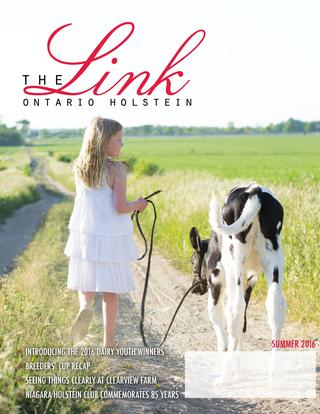The Link Cover